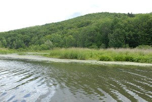 Housatonic River, July 2007