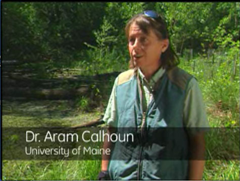 Dr. Aram Calhoun